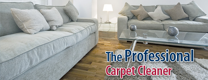 Carpet Cleaning Castle Rock CO